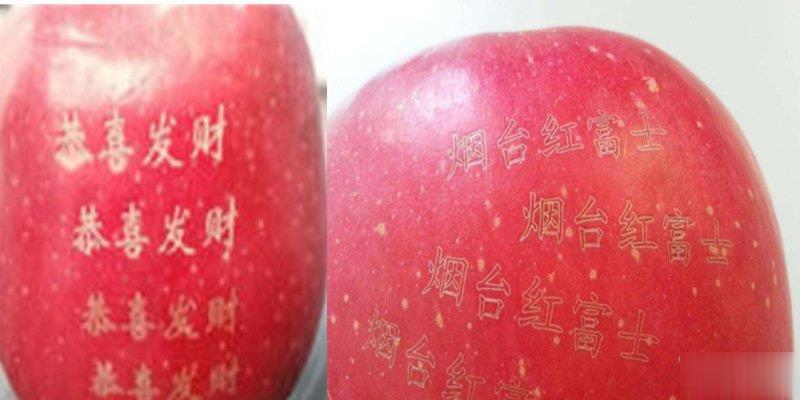 水果打标机
